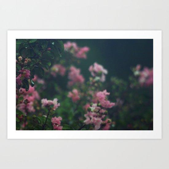 Soft Hues II Art Print