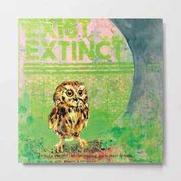Saw Whet Owl Metal Print
