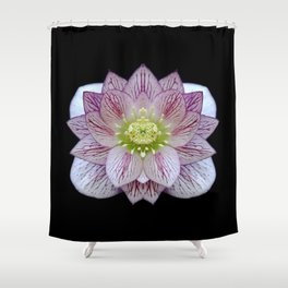Hellebore Flower Symmetry Shower Curtain