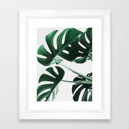 Monstera, Leaves, Plant, Green, Scandinavian, Minimal, Modern, Wall art Framed Art Print