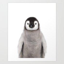 Baby Penguin Kunstdrucke
