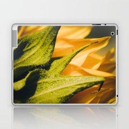 Sunflower (2) Laptop & iPad Skin