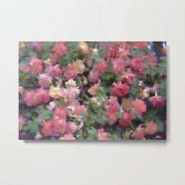 Rose 356 Metal Print