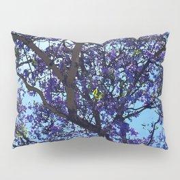 Jacaranda in Spring Pillow Sham