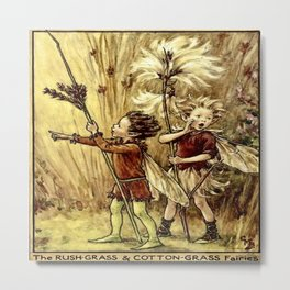 """""""The Rush-Grass and Cotton-Grass Fairies"""" by Cicely Mary Barker 1923 Metal Print"""