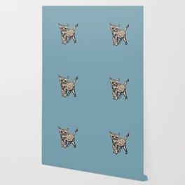 Animal Series: Kitty Curious Wallpaper