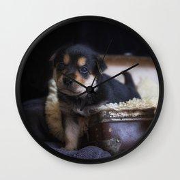 Australian kelpie puppy Wall Clock