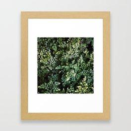 #43 Framed Art Print