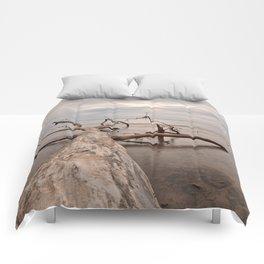 Dead Tree Bay Comforters