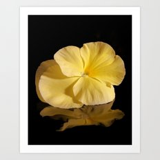 Little Yellow Pansy Art Print