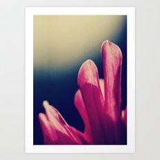 moody pink. Art Print