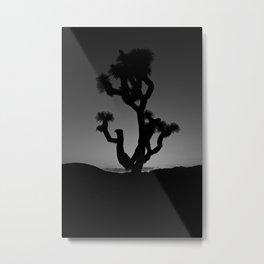 Lone Joshua Tree Metal Print