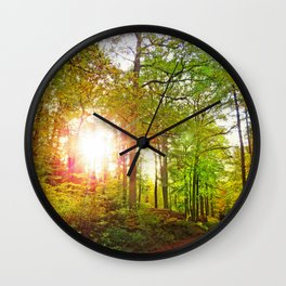MM - Evening sun in the fall forest Wall Clock