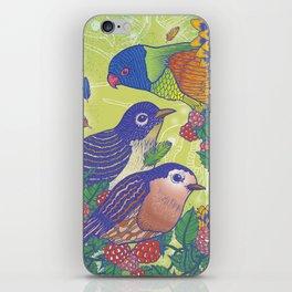 Birds2 iPhone Skin