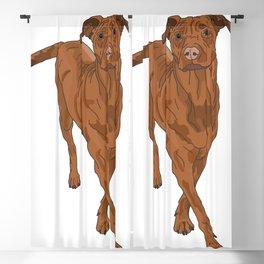 Dog Portrait 2 Blackout Curtain