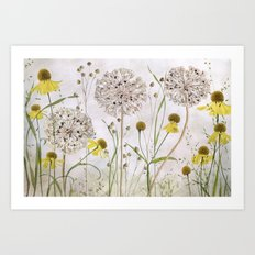 Alliums and Heleniums Art Print
