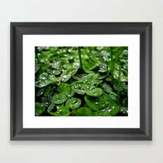 Bedazzled clovers Framed Art Print