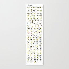Parulidae Canvas Print