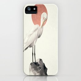 White Wings iPhone Case