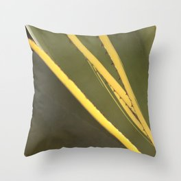 Agave cactus succulent leaves pattern Throw Pillow