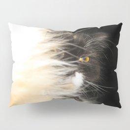 Fluffy Calico Cat Pillow Sham
