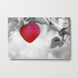Dramatic Red Heart Shaped Apple on a Black and White Tree Branch Metal Print