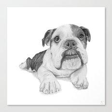 A Bulldog Puppy Canvas Print