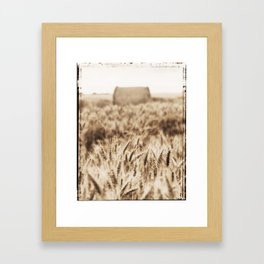Harvest time Framed Art Print
