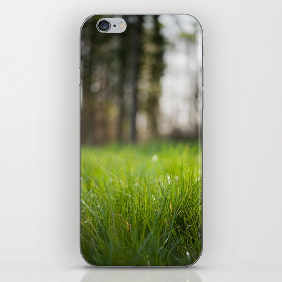 Spring Awakens iPhone & iPod Skin