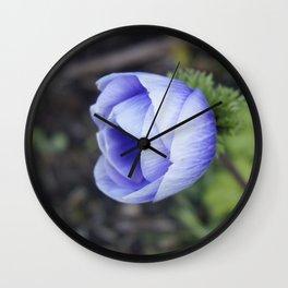 Blue Ranuncula Wall Clock