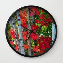 Birch Maple by Teresa Thompson Wall Clock