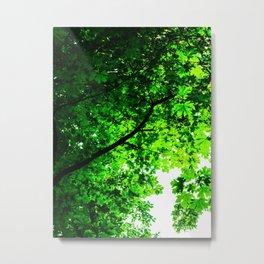 Maple Magic Metal Print