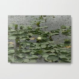 Breaking Through Metal Print