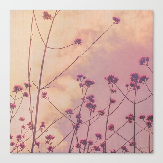 Vintage Pink Wildflowers with Dusty Purple Sky Background Canvas Print