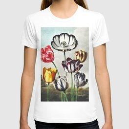 Robert John Thornton - Tulips T-shirt