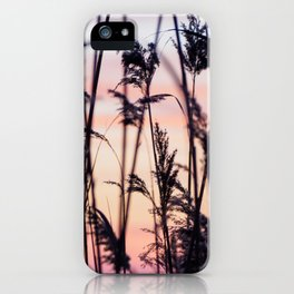 Long Point Sunset iPhone Case