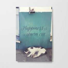 Happiness Is A Warm Cat Metal Print