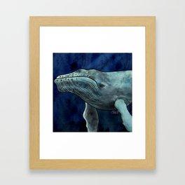 Humpback Whale Illustration Framed Art Print