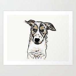 Bindi Australian Cattle Dog Art Print