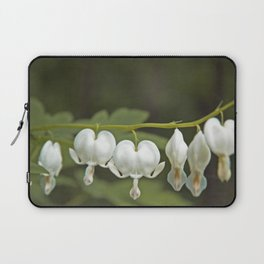 White Bleeding Hearts with Green Laptop Sleeve
