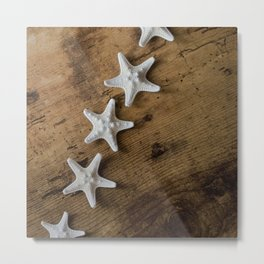 starfish #10 Metal Print