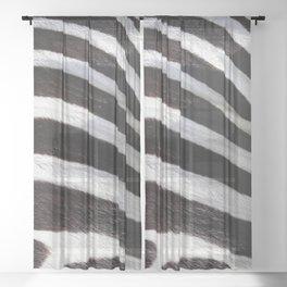 """Pop Safari 01 Zebra"" Sheer Curtain"