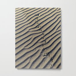 Beach Take Off Metal Print