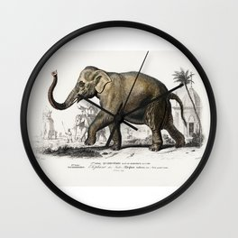 Asiatic elephant (Elephas maximus) indicus illustrated by Charles Dessalines D' Orbigny (1806-1876) Wall Clock