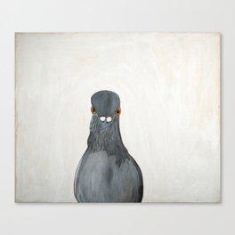 Tubbs the Piegon Canvas Print