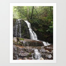 Tennessee Waterfall Smoky Mountains Color Photo Art Print