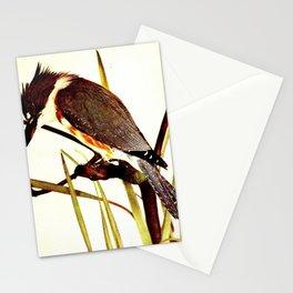 Neltje Blanchan - Bird Neighbours (1903) - Kingfisher Stationery Cards