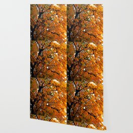 Amber Leaves of Fall Wallpaper