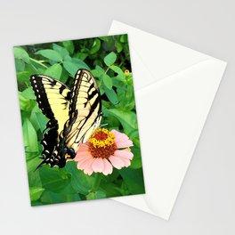 Butterfly on Zinnia 4 Stationery Cards