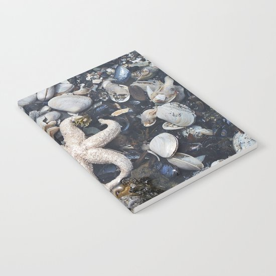 Starfish and Shells Notebook
